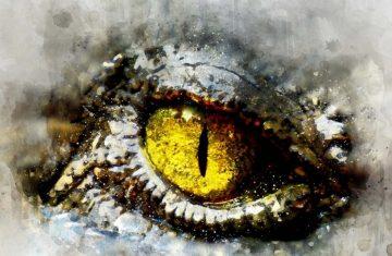 alieneye