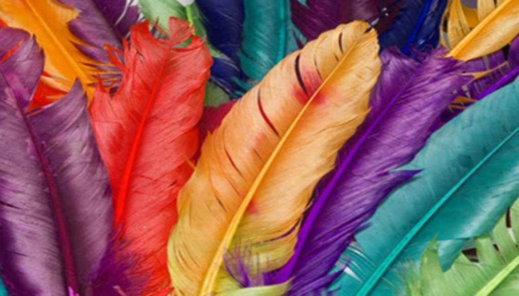 colorfulfeathers