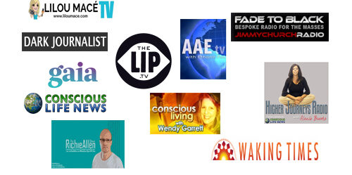 Alternative Media NewFace 2