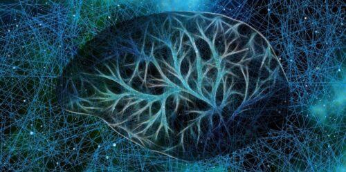 brainneuron