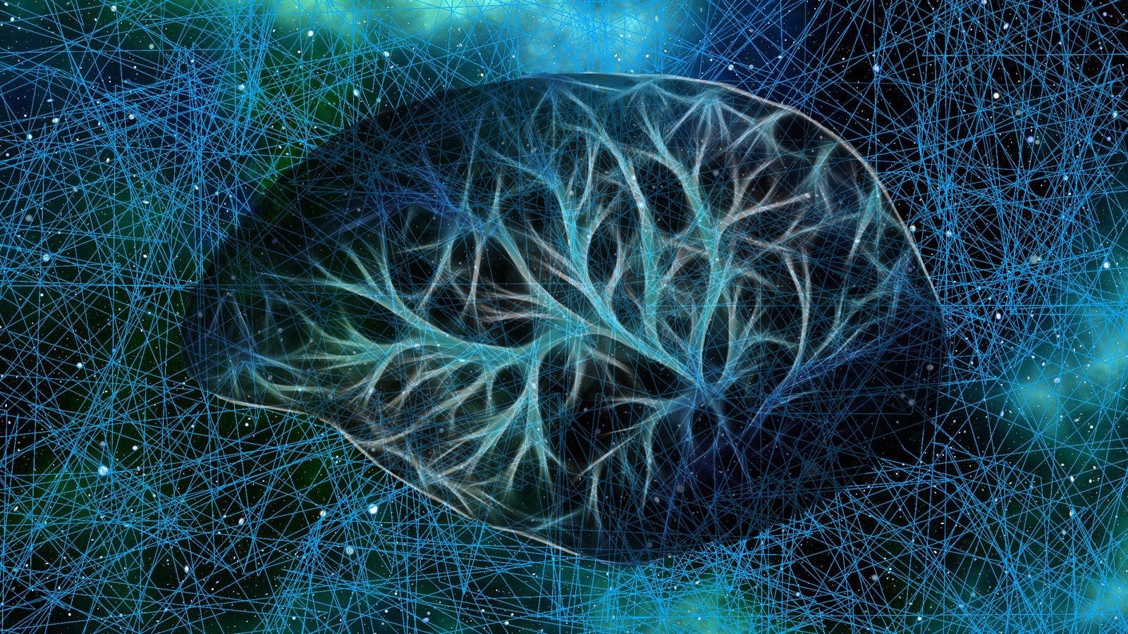 The Virus, Memory, Mandela Effect Connection