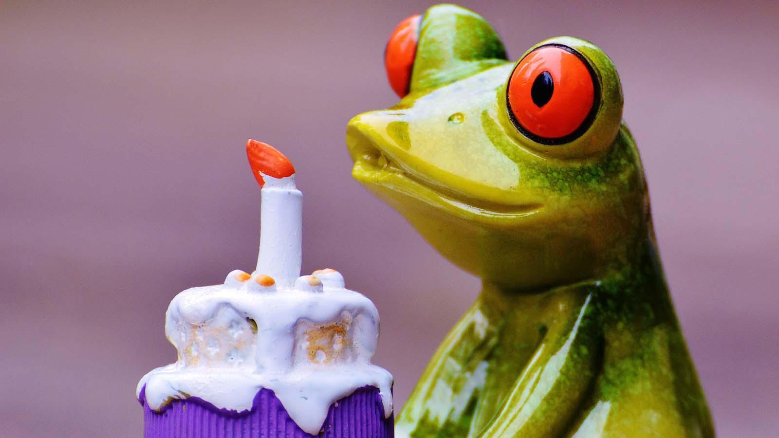 happyfrog